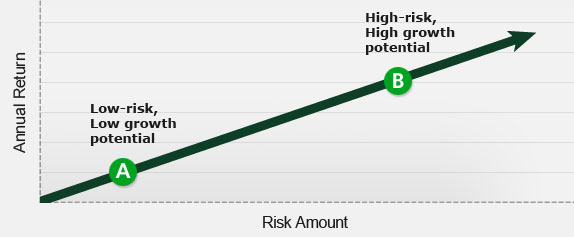 What is your investment risk tolerance?